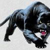 13.Por tí.3-08_Juancy Giménez- Los Panthers_Con toda la garra Portada del disco