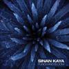 Sinan Kaya - Negotiation (Matthias Korr remix) Punch & Bloom Album preview