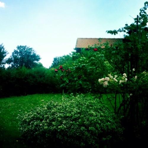 Paradise at Graz