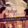 Gotye - Somebody That Used To Know (Bootleg DJ KL DOOM)