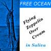 Saliva(Flying Zeppelin over Cream)