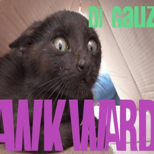 Dj Gauzy - Awkward