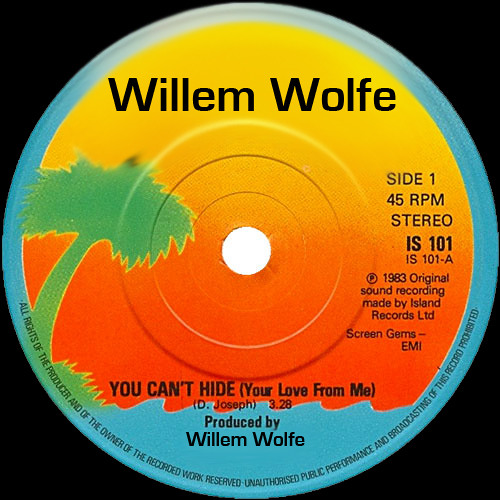 David Joseph - You Can't Hide (Willem Wolfe edit) * FREE DOWNLOAD *