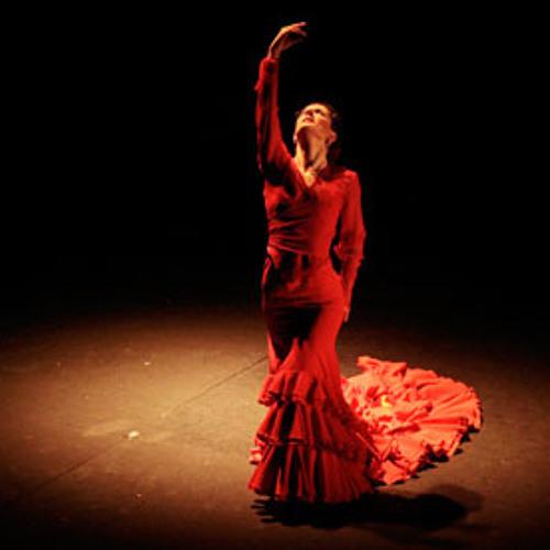 Techno Minimal Flamenco-Nil [SDee Club Remix] Flamenco Mix  SDee Bootleg 2012