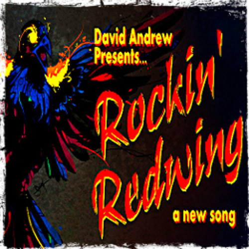 Rockin Redwing