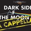 Dark Side of The Moon interview bij Radio 2 / Music Matters, 24-6-2012