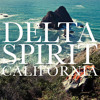 Delta Spirit - California (Rex the Triangle Remix)