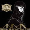 Jo Kwon - Animal (Real Shinjitsu Mix)
