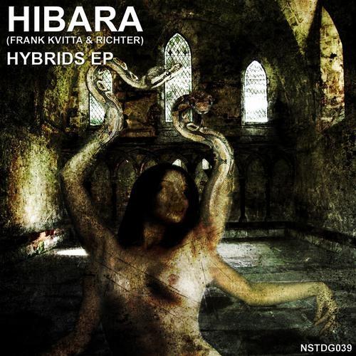 Hibara ( aka Frank Kvitta & Richter ) : Channeling