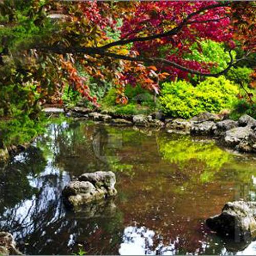 Abel Vegas - Mei's Garden