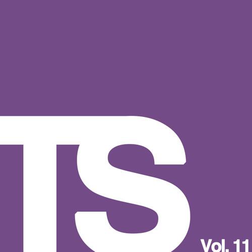 TeamSupreme Vol. 11