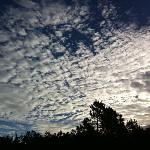 Voice Of The Clouds (STBB 277)