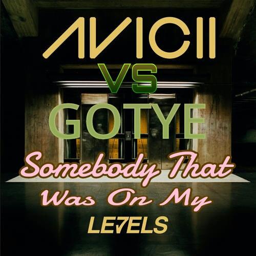 Somebody That Was On My Levels Intro (DJ A-Wrek Mashup)- Avicii VS Gotye