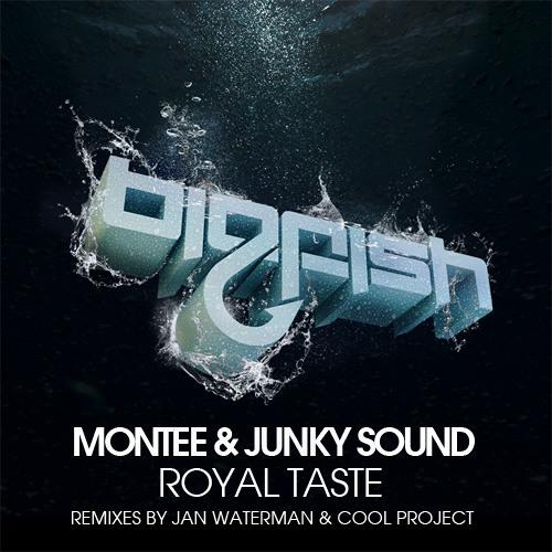 Montee & Junky Sound - Royal Taste (Jan Waterman remix) [Big Fish Recordings] - Out now