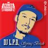 Dj L.P.D. SpringBreak 2010
