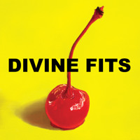 Divine Fits - Would That Not Be Nice