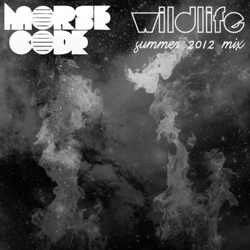 Wildlife Summer 2012