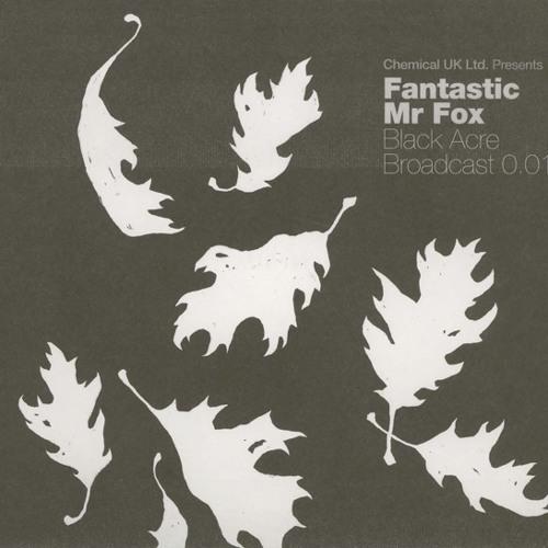 Jamie XX & Fantastic Mr Fox - Miss You