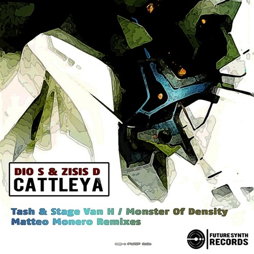 Dio S & Zisis D - Cattleya (Matteo Monero Remix) - Future Synth Records PREVIEW