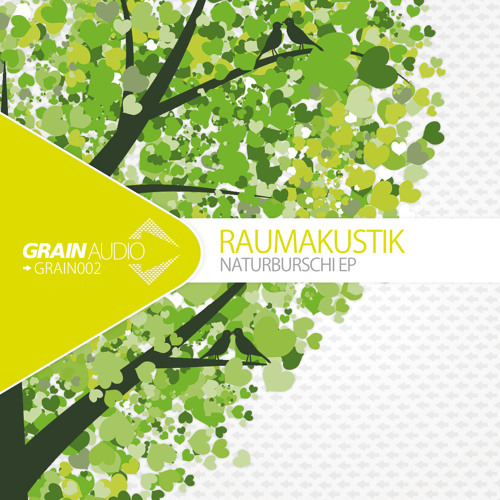 GRAIN002B1 Raumakustik - Loving The Trees (Ron Flatter Remix)