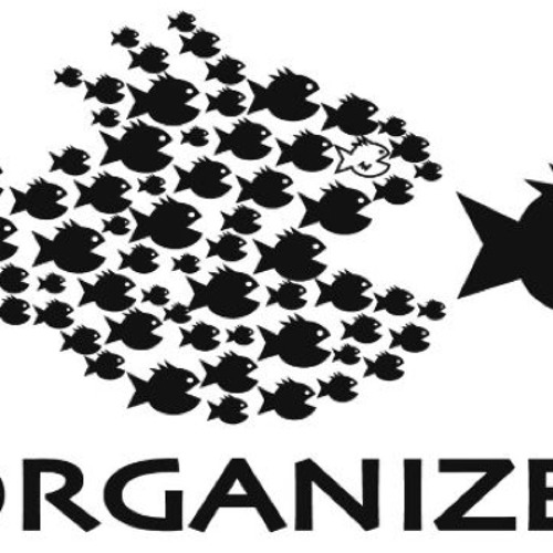 Organize! High grade Message Music Festival!