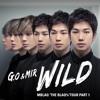 Wild - Mir feat. G.O ( MBLAQ )