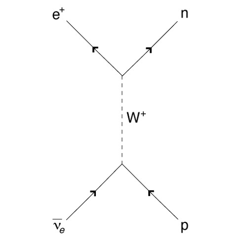 9 - Weak Interaction (Cut Intro)
