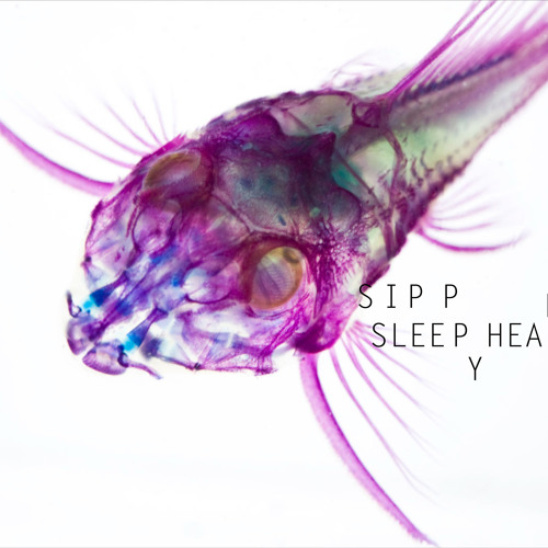 Patterns In Plastic - Sleepyhead [Sipp remix]