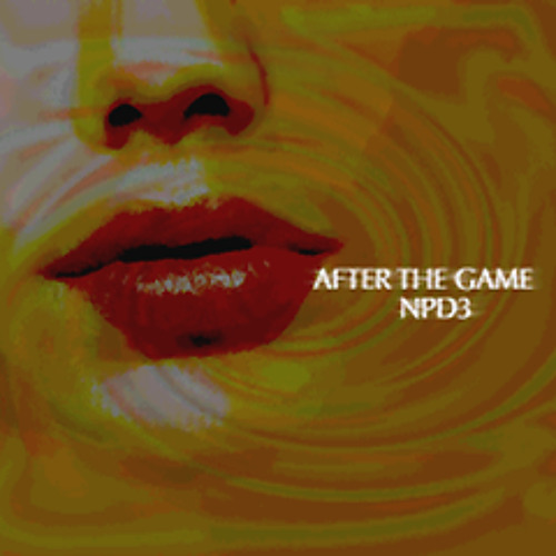 After The Game - NPD3 feat. Naoki