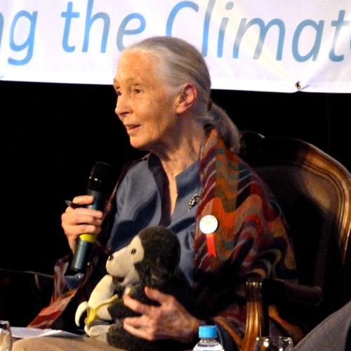 Jane Goodall @Rio+20