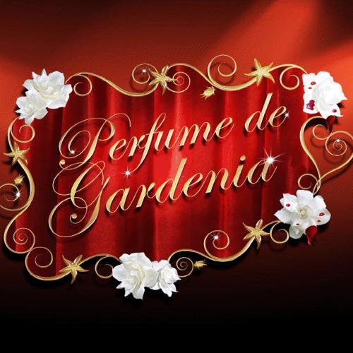 Perfume de Gardenias (Marco Axwell Mix) - La Sonora Santanera