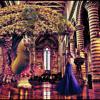 Gypsy Jungle Polka - Dylan Mather