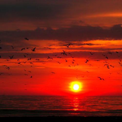 Sarah Winton - Sunrise (Produced By Blazeitdown)