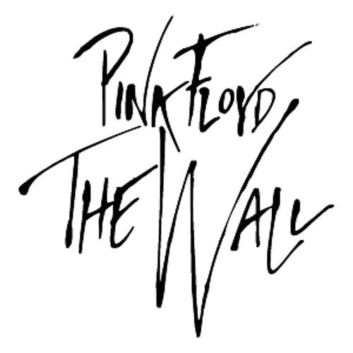Pink Floyd vs Luciano Colman & Tevy Cavoti - Hey You  ERKE Records