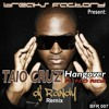 TAIO CRUZ ft. FLO RIDA -HangOver (DJ RANDY Remix) FREE DOWNLOAD