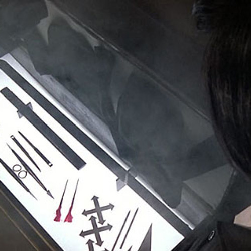 Shadow.Ninja - Metamorphosis