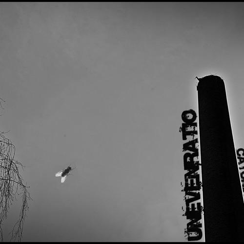 [TNN006]Unevenratio - Catching Flies (Original Mix)