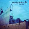 windowlicker's hi-tech summer