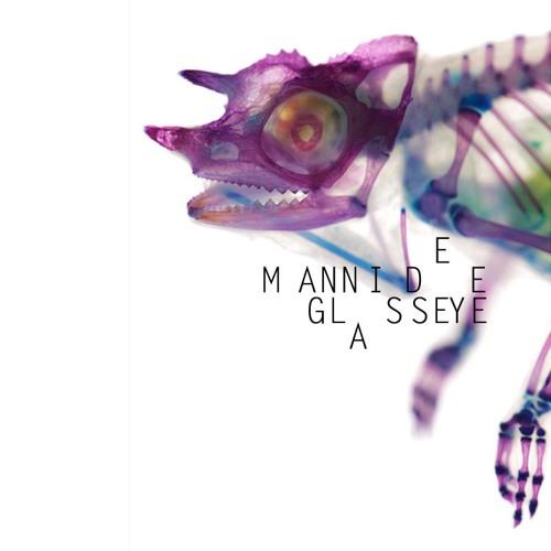 Patterns In Plastic - Glasseye (Manni Dee Remix)