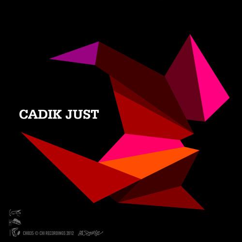 Cadik - Last Vinylist