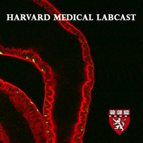 Harvard Medical Labcast