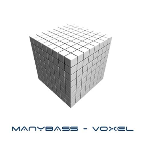 ManyBass - Voxel (Original mix) [preview]