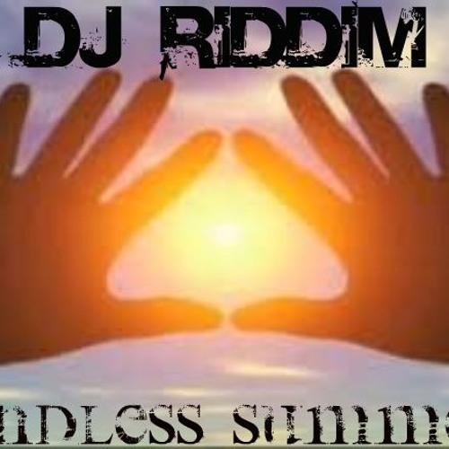 DJ RIDDIM-Endless Summer