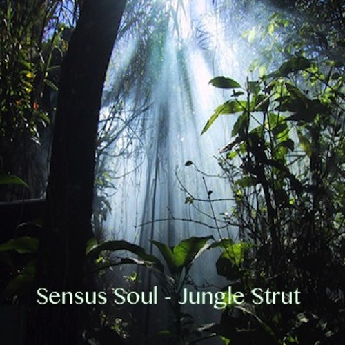 Sensus Soul - Jungle Strut