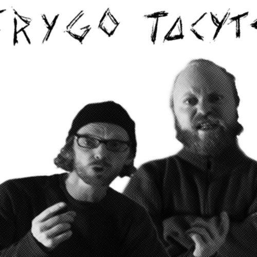 Frygo Tacyte