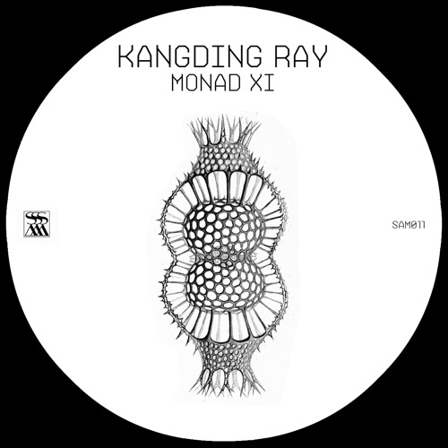 Kangding Ray 'Monad XI' [SAM011]