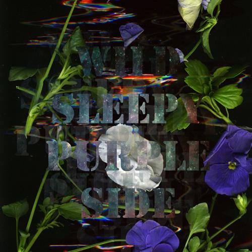 WildSleepyPurpleSide