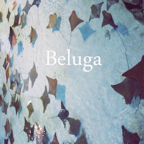Phantasm - Beluga