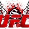 DEMO ULTIMATE FIGHT MMA (Loc Lo)