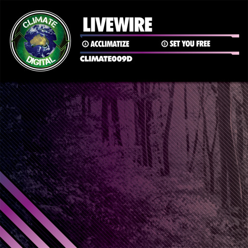 Livewire - Set You Free
